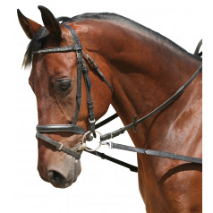 Side reins without elastic insert