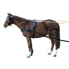 Single harness Synthetic